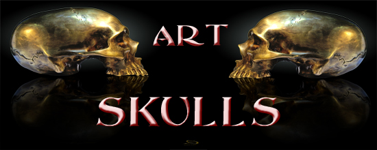 Skull Art For The Imagination