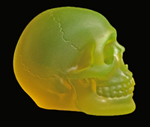 smlflourol PHOSPHORESCENT SKULL